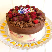 Raspberry and chocolate ice cream cake from Rays Ice Cream