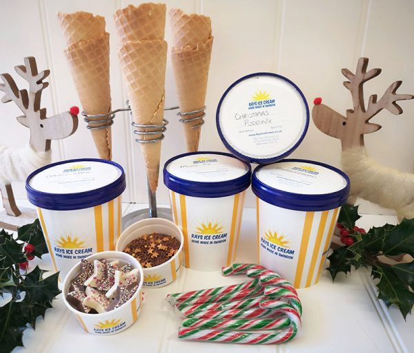 Festive Vegan Ice Cream Bundle from Rays Ice Cream